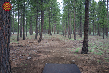 Hyzer Pines Course Tour
